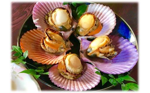 錦盛丸水産のひおうぎ貝