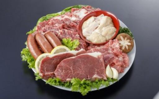 【熊本県合志市】人気の馬焼肉セットはいかが!?