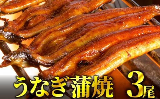 鰻蒲焼 3尾