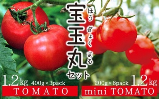 トマト&ミニトマト「宝玉丸」2.4kg受付開始!
