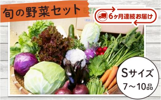 【旬の野菜を定期でお届け】旬の野菜セットSサイズ