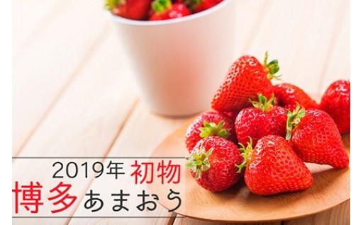 【初物】2019年内配送 あまおう 白木のいちご