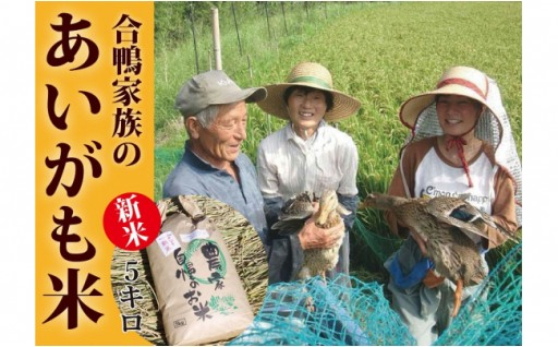 合鴨農法で育てた【あいがも米(3分づき) 5㎏】