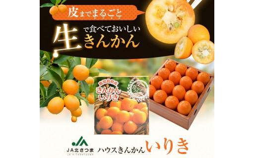 JA北さつまのきんかん【3L・32玉入】季節限定
