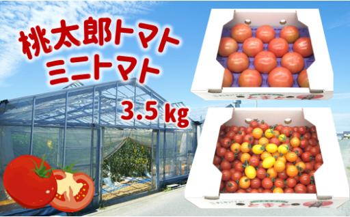 トマトざんまい!