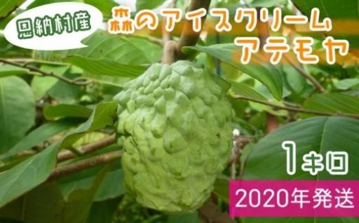 【2020年発送】恩納村産 アテモヤ 1kg