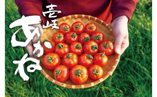 【新商品】完熟トマト「壱岐あかね」