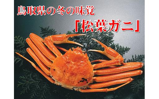 【数量限定】鳥取の冬の味覚の王者「松葉ガニ」