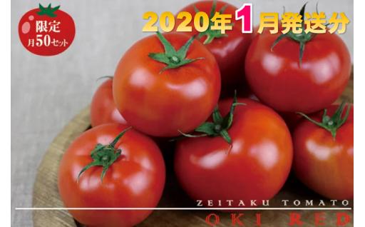 東村で採れた『ぜいたくトマト』約1.5キロ