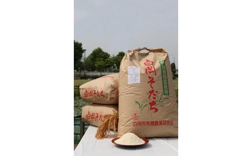 こだわりの特別栽培米・新米はじめました!