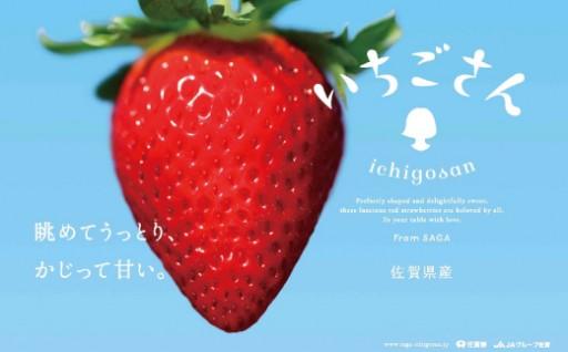 佐賀県産いちご「いちごさん」280gx4P