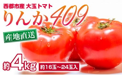 西都市産 米良さんの大玉トマト「りんか409」