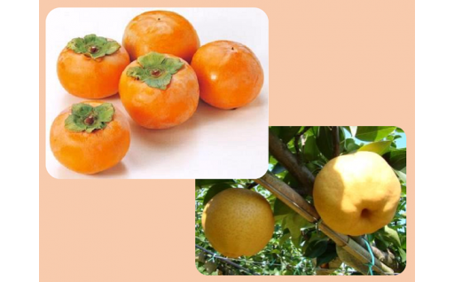 今年最後の「柿・梨」、お申込み締切が間近です!
