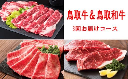 定期便【鳥取牛+和牛で、すき焼き&ステーキ】
