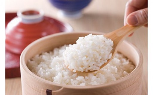 《5ヵ月定期便》 庄内米の代表銘柄 5種食べ比べ