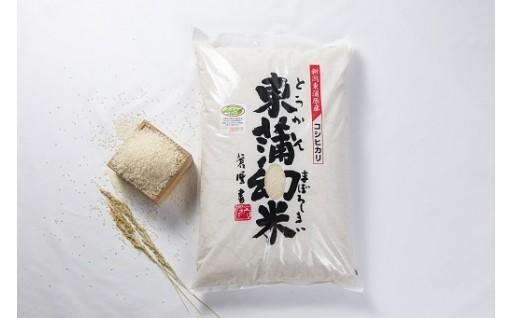 コシヒカリ東蒲幻米10kg
