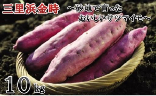 三里浜金時 10kg ~砂地で育ったサツマイモ~