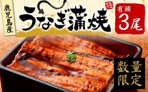 大隅産うなぎ蒲焼(有頭) 3尾