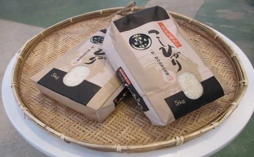 皇室献上米農家のお米 10kg(5kg×2)