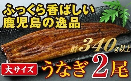 清らかな地下水で育った鹿児島産うなぎ【大】2尾