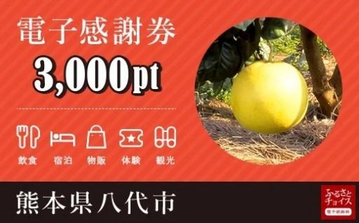 電子感謝券 3,000pt【会員限定のお礼の品】