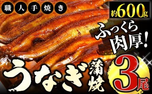 鰻蒲焼 3尾(約200g×3尾)