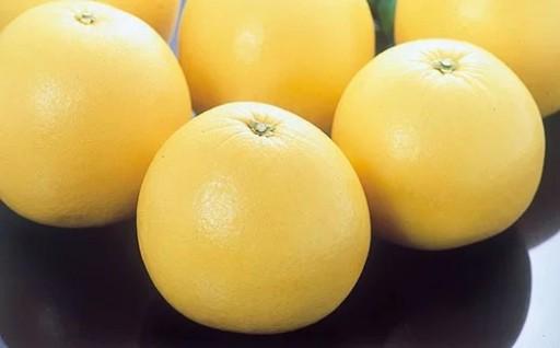 八代特産 晩白柚(ばんぺいゆ)1玉 柑橘 2L