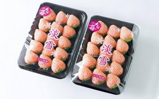 【先行予約】白いちご「淡雪」2パック入×1箱
