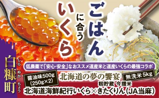 北海道夢の饗宴★人気№1【いくら】とお米のセット