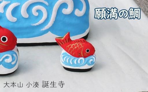 可愛い『願満の鯛』と一緒におめでたい新年を!