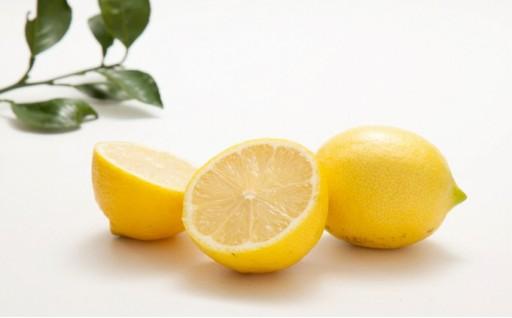レモン2.5kg(農薬:栽培期間中不使用)