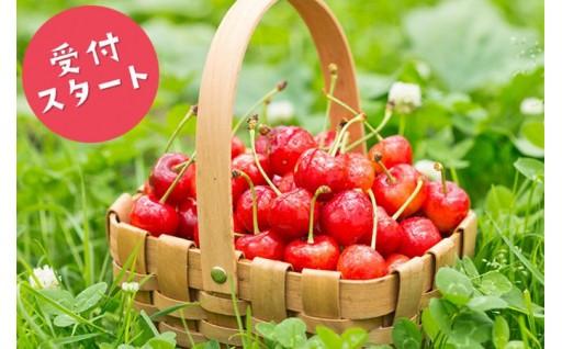 果物、色々選べます!【さくらんぼ、ラ・フランス】