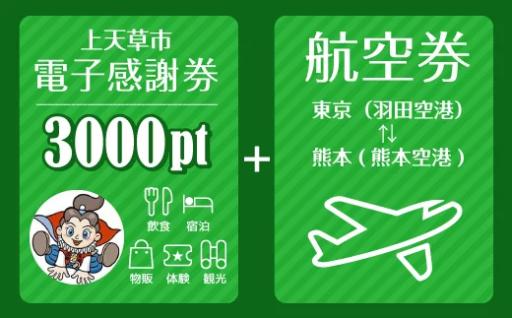 東京⇔熊本 往復航空券+電子感謝券3,000pt