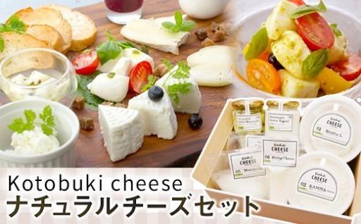 6種のナチュラルチーズセット