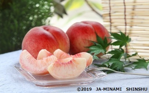 【先行予約受付中】毎年大人気の「桃」!!