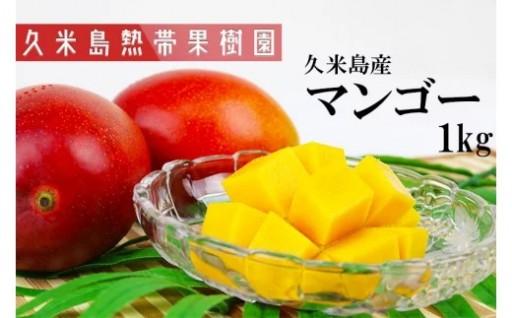 2020年発送 久米島熱帯果樹園 マンゴー1kg