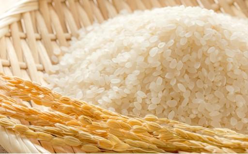お米の心配なし!秋田のお米、定期便!