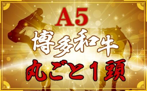 丸ごと1頭!【A5】博多和牛~いかがですか!?