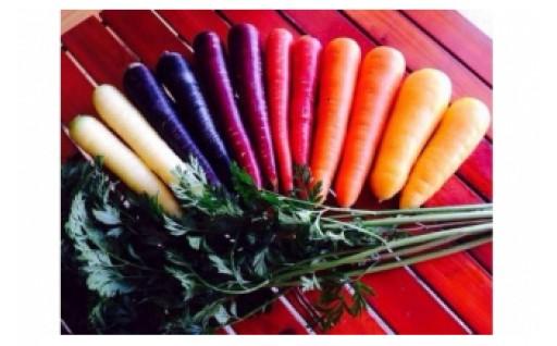 碧南市の旬を味わう!農園自慢の旬野菜特集