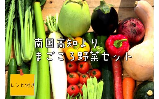【年末だけの限定】高知の野菜12回お届け定期便!