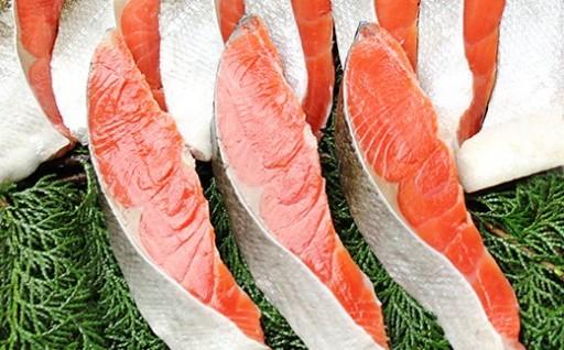 市場内で職人が手切りした肉厚鮭切り身が10切れ!