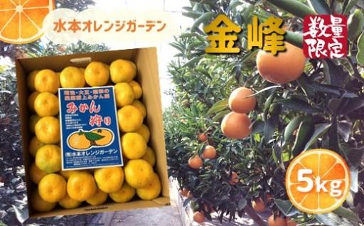 温州みかん高級品種「金峰5kg」【限定50個】