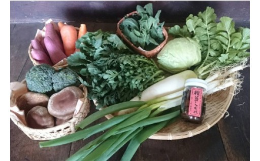 豊能町産の美味旬菜と加工品のお得なセット定期便