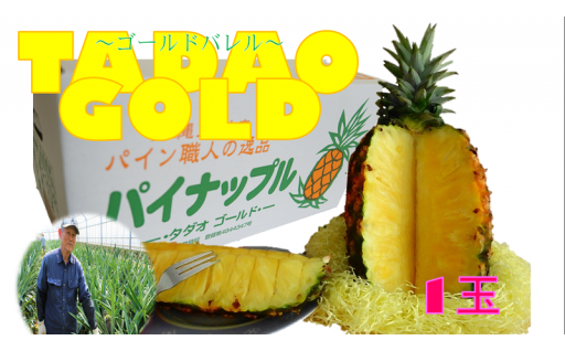 【TADAO GOLD】1玉 1.7㎏