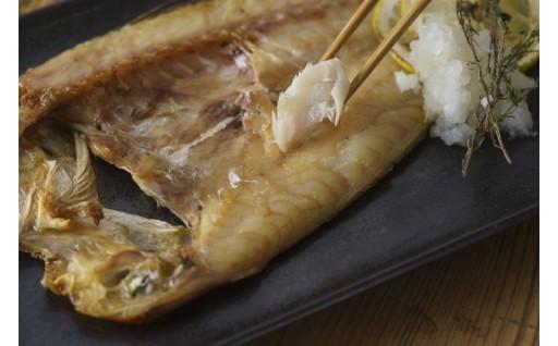 長崎漁港の新鮮な魚を一夜干しに!