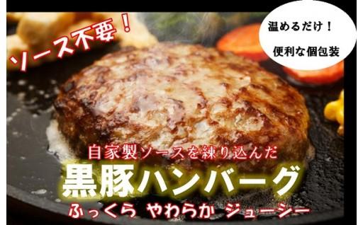 鹿児島県産黒豚ハンバーグ10個入り