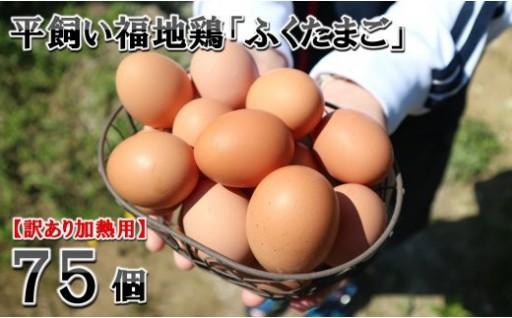 【訳あり加熱用】 平飼い福地鶏 「ふくたまご 」