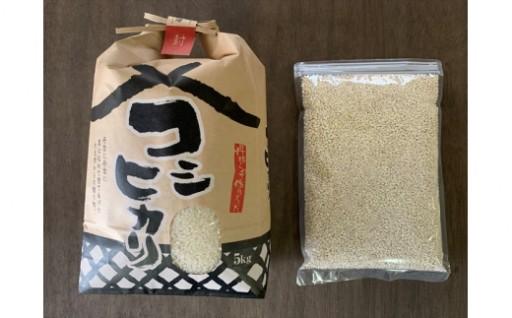 【6ヶ月定期便】お米ともち麦セット