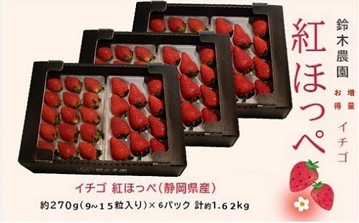 掛川・紅ほっぺ270g×6P3月下旬頃から発送