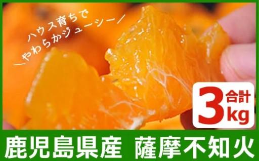 減農薬の国産!鹿児島県産!みかん (3kg)